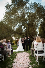 Napa-wedding-photography--0387