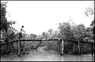 Mekong Delta - Vietnam, 2000