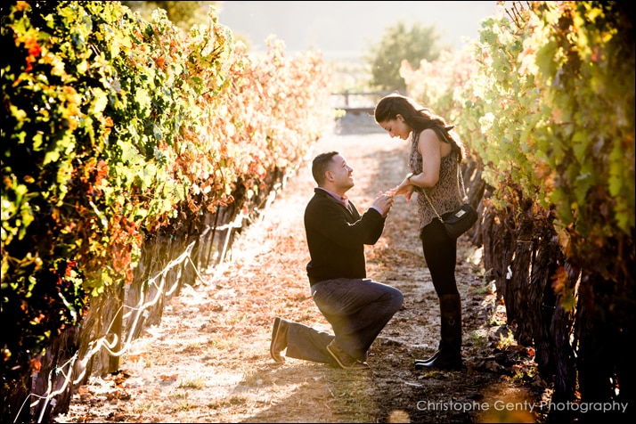 Candid Mariage Proposal Photography at Brix Restaurant - Napa, CA