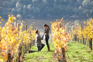 Napa Valley Candid Proposal Photography - Viader Winery