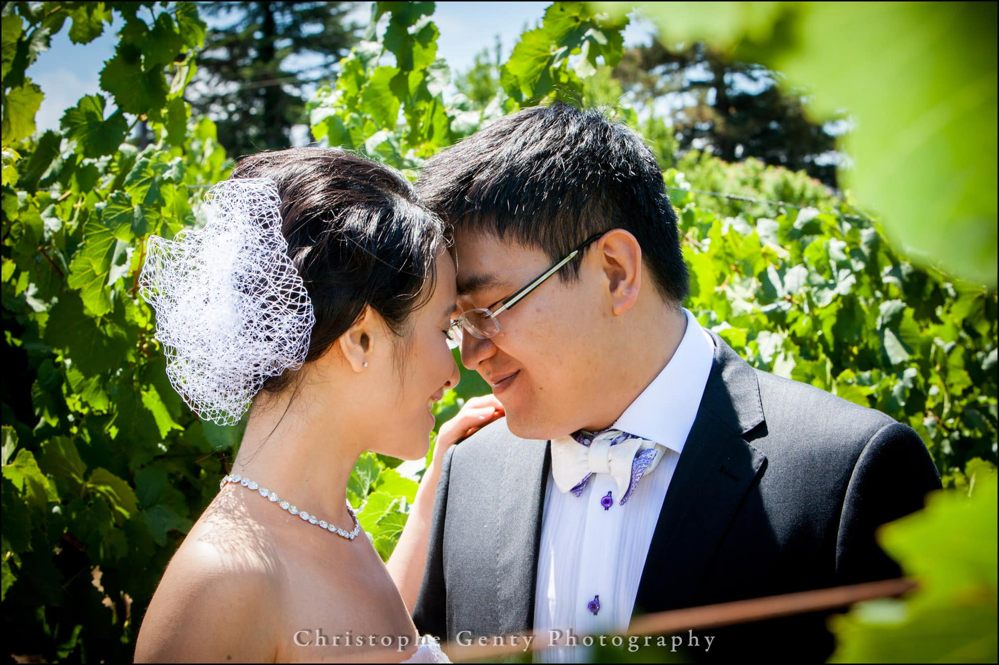 Napa Valley wedding photography in the carneros vineyard
