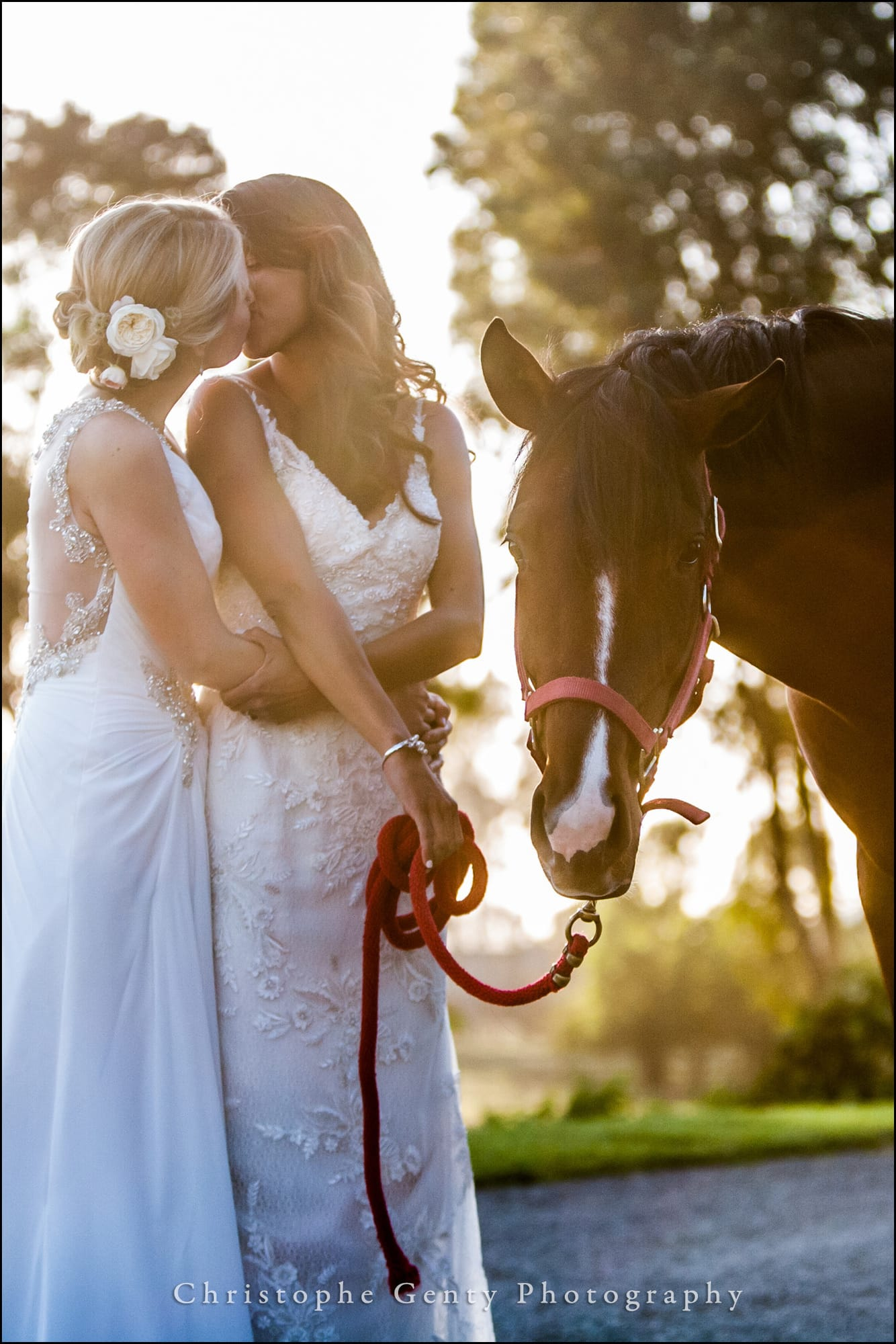 Wedding Photography at The Flying Cloud Ranch in Petaluma, CA