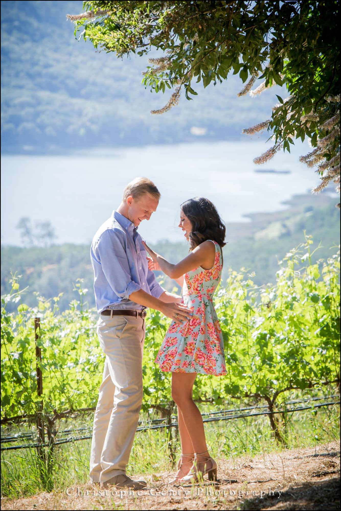 Marriage Proposal Photography at Jacuzzi Family Vineyards in Sonoma, CA