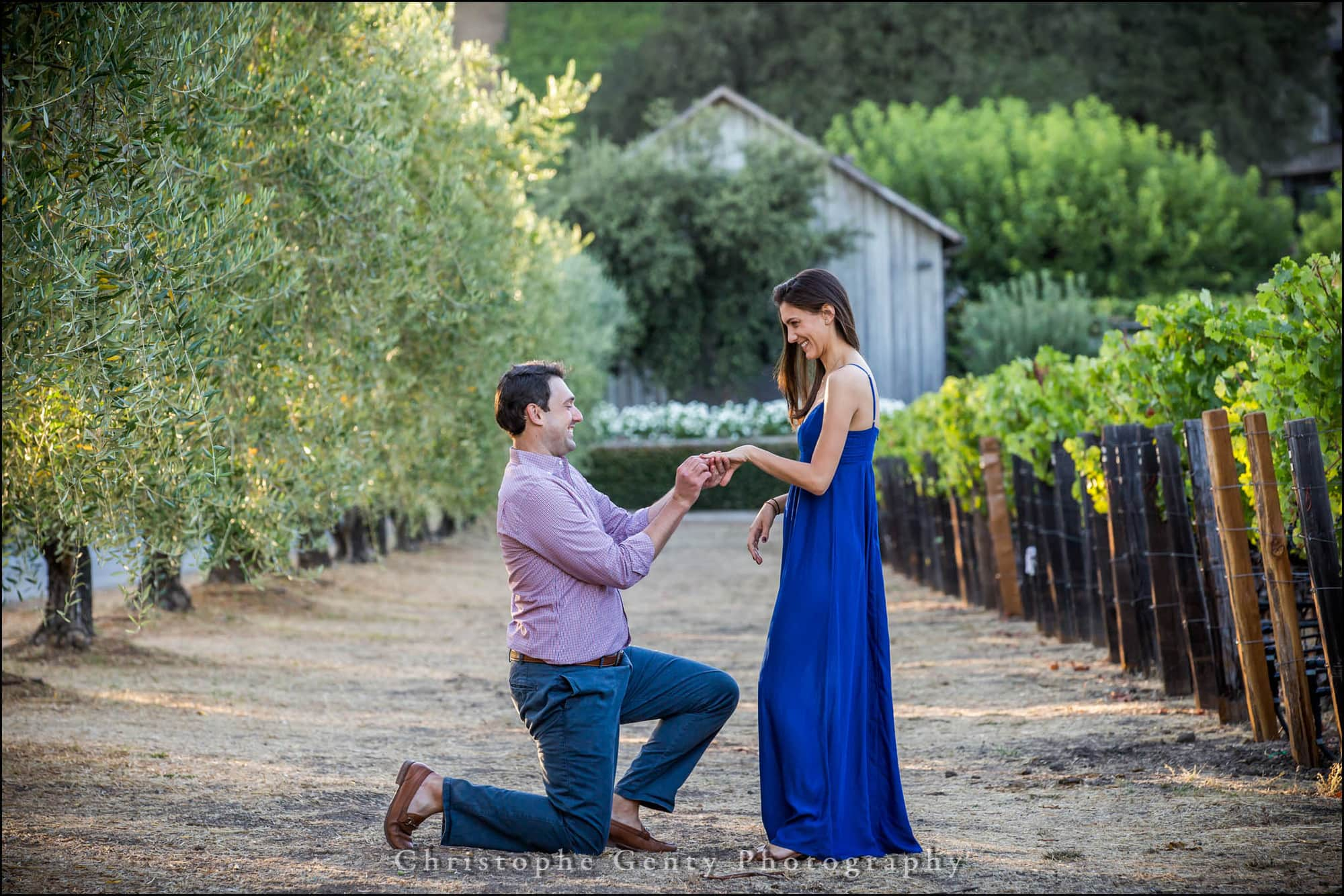 Marriage Marriage Proposal Photography at Meadowood Napa Valley Proposal Photography in the Napa Valley Amizetta Winery