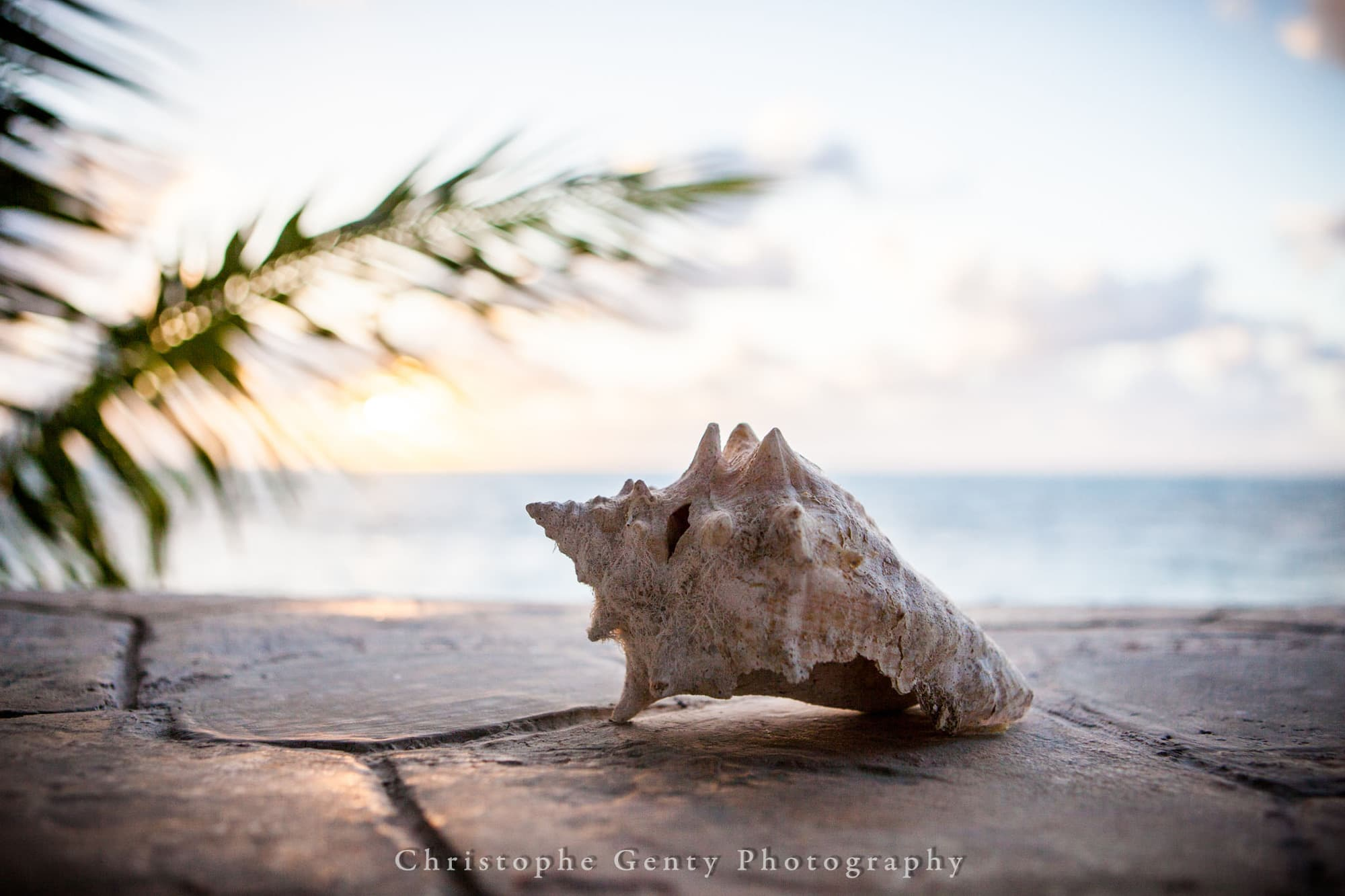 Fine Art Photography in Puerto Morelos, Mexico