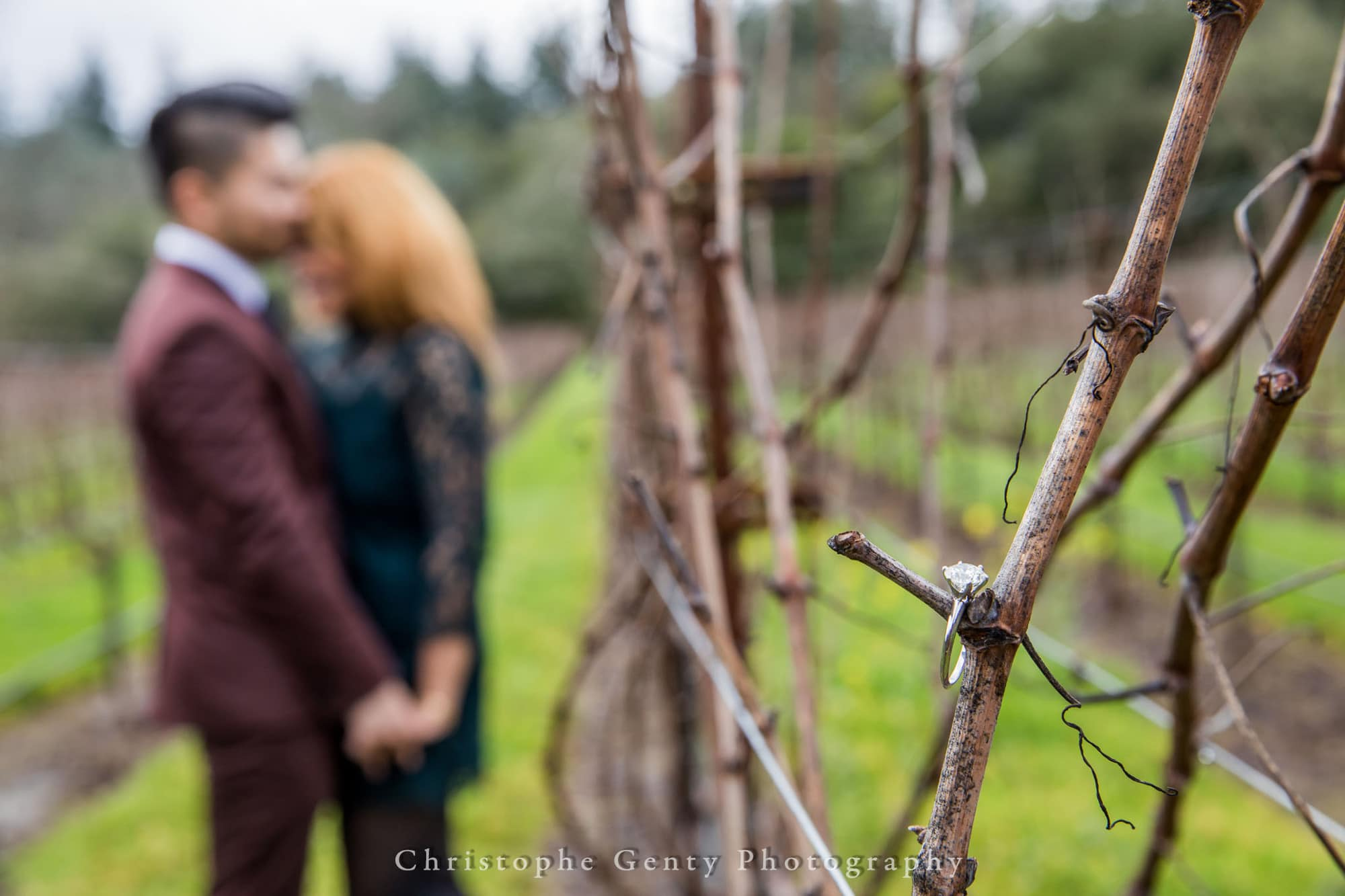 Marriage Proposal Photography in The Napa Valley - Bremer Winery