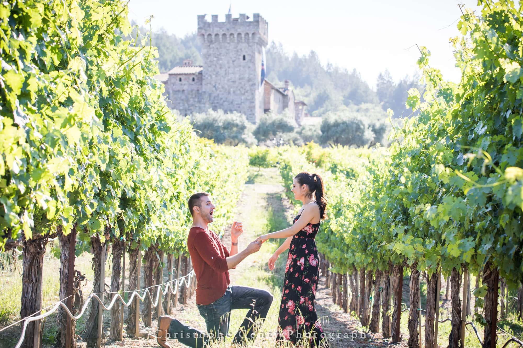 Castello di Amorosa Marriage Proposal Photography 309