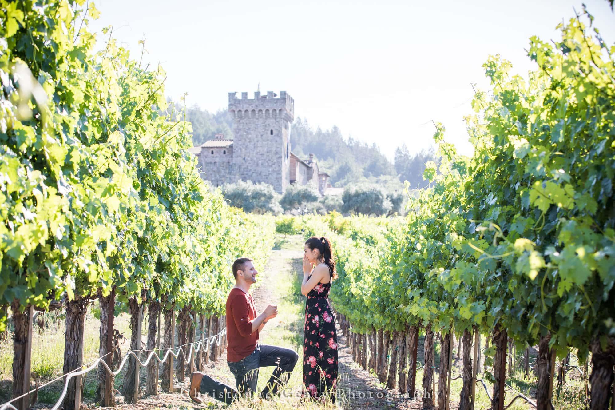 Castello di Amorosa Marriage Proposal Photography 310