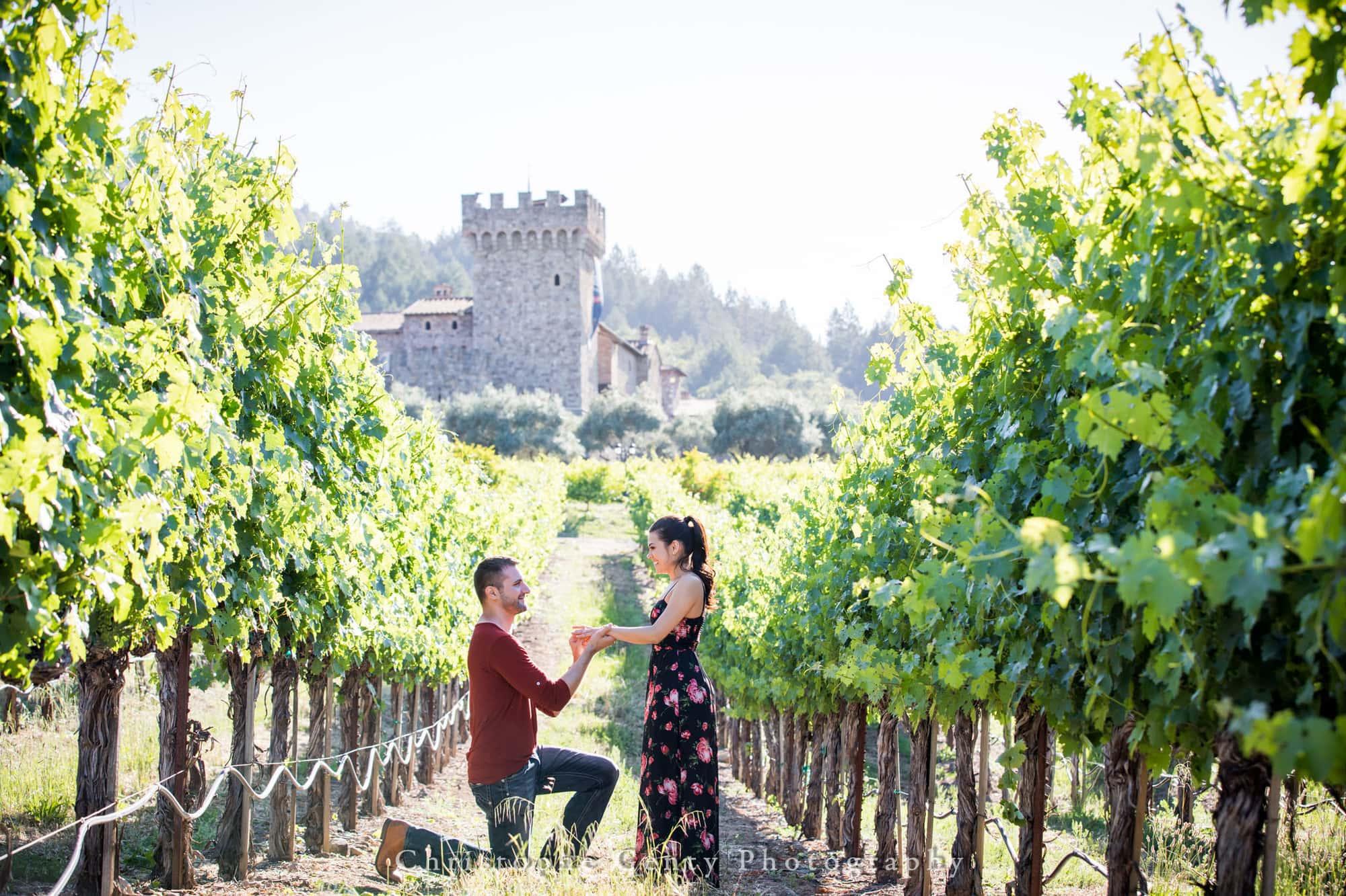 Castello di Amorosa Marriage Proposal Photography 317