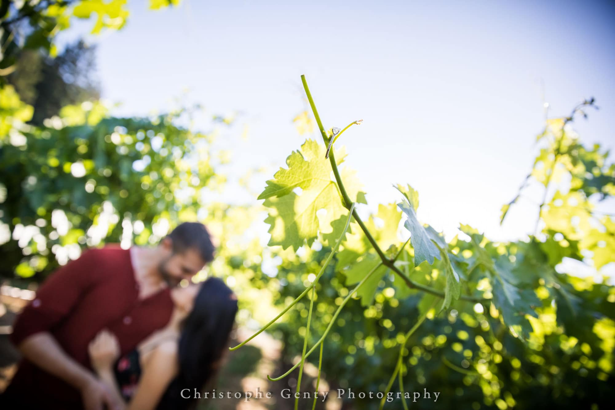 Castello di Amorosa Marriage Proposal Photography 364