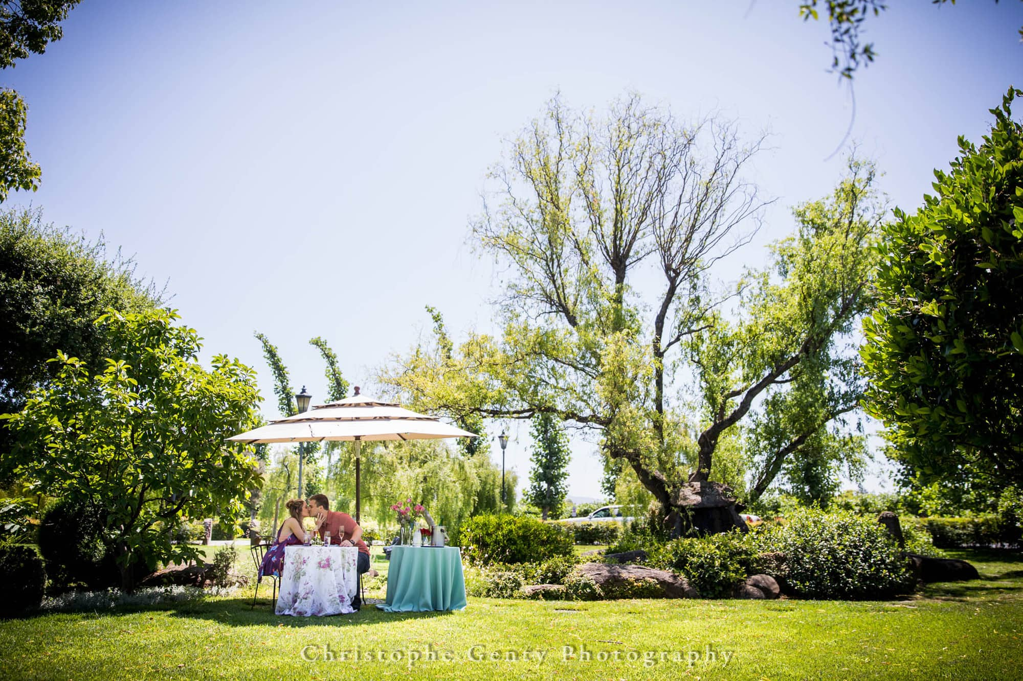 Marriage Proposal Photography at Peju Province Winery, St Helena, CA