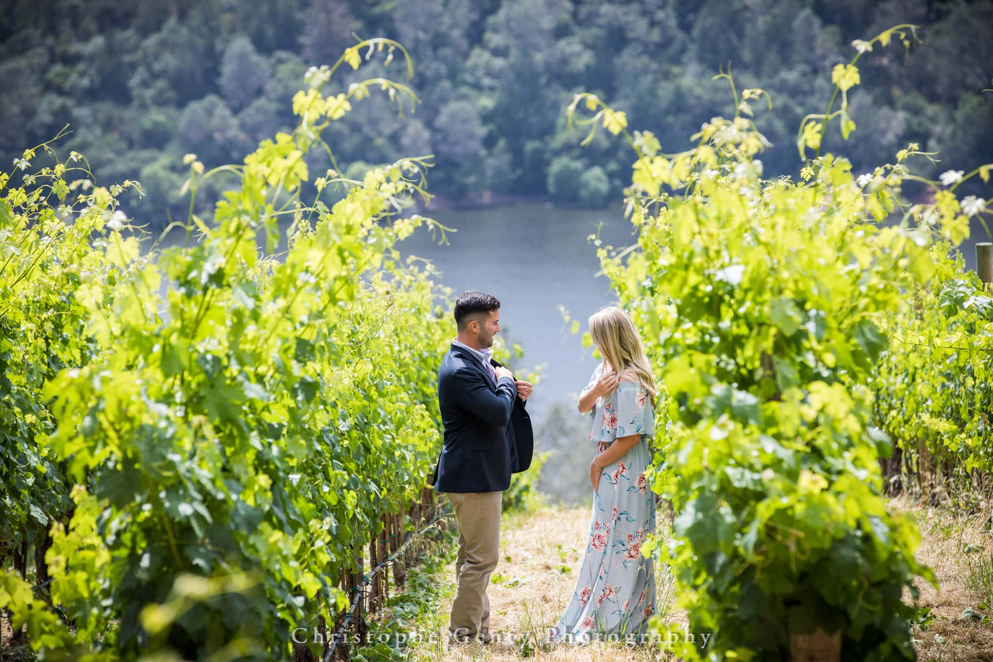 Marriage Proposal Photography in Napa -1002