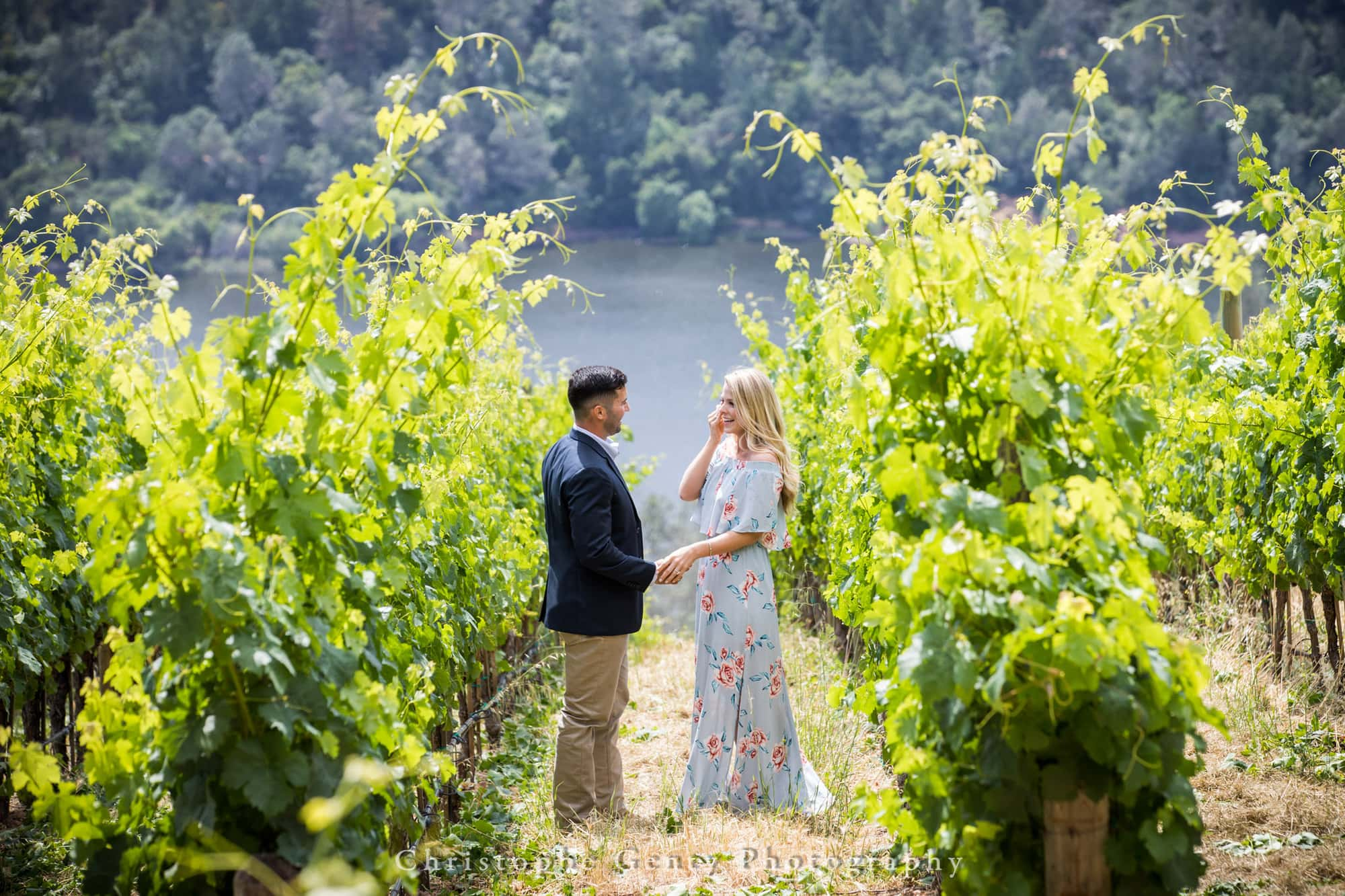 Marriage Proposal Photography in Napa -1005