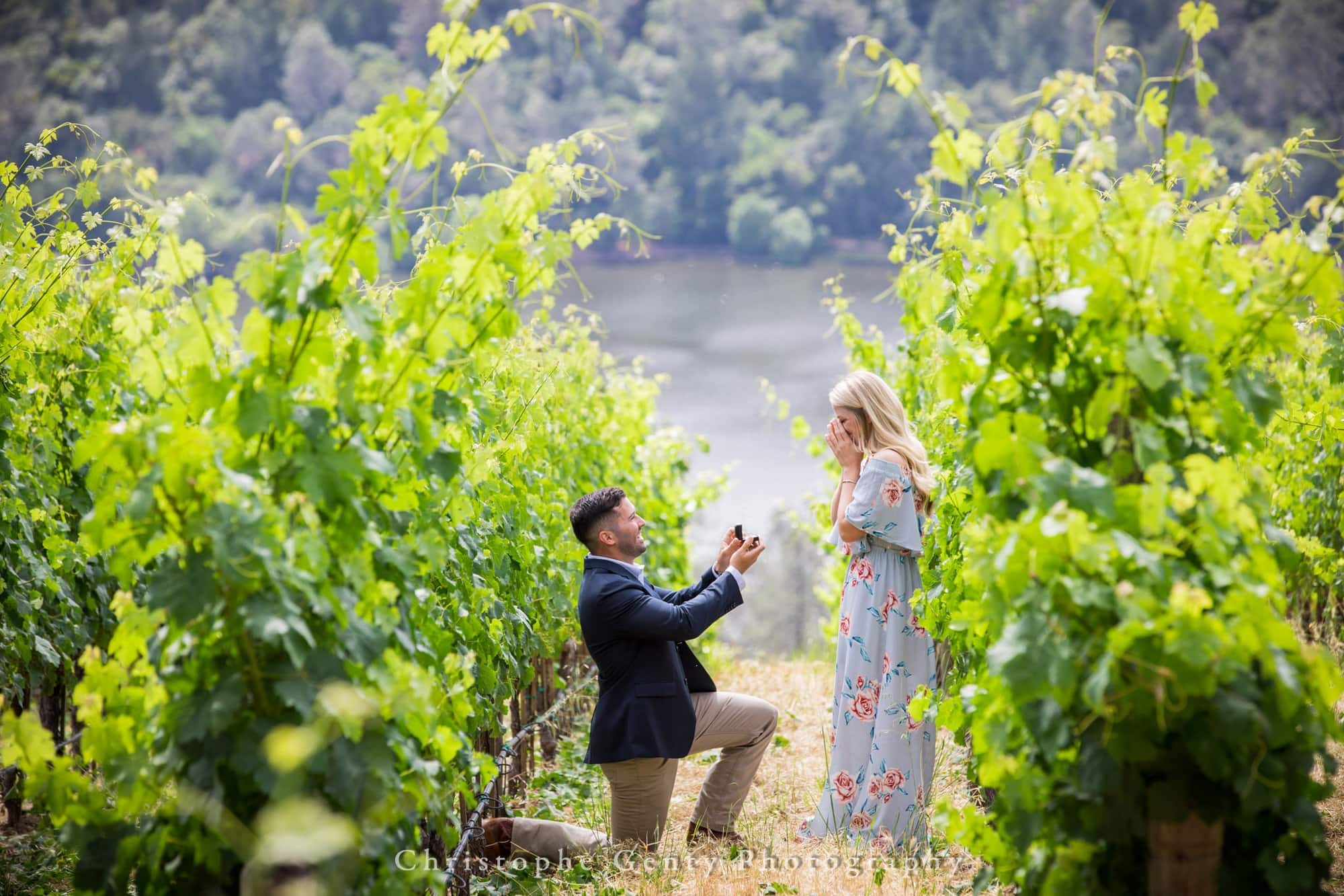 Marriage Proposal Photography in Napa -1011