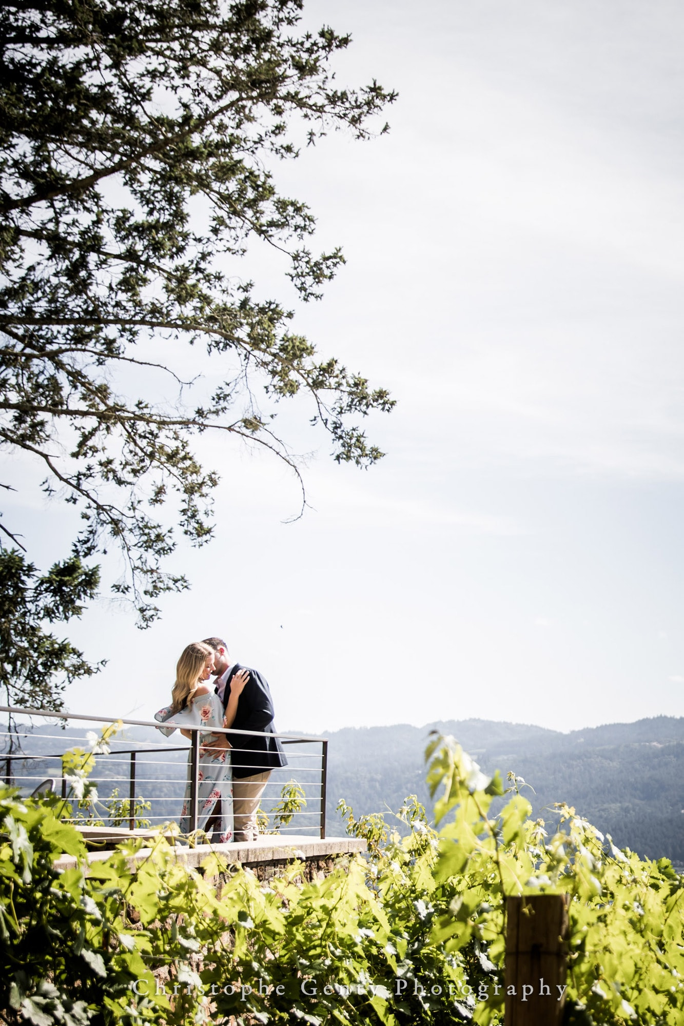 Marriage Proposal Photography in Napa -1039