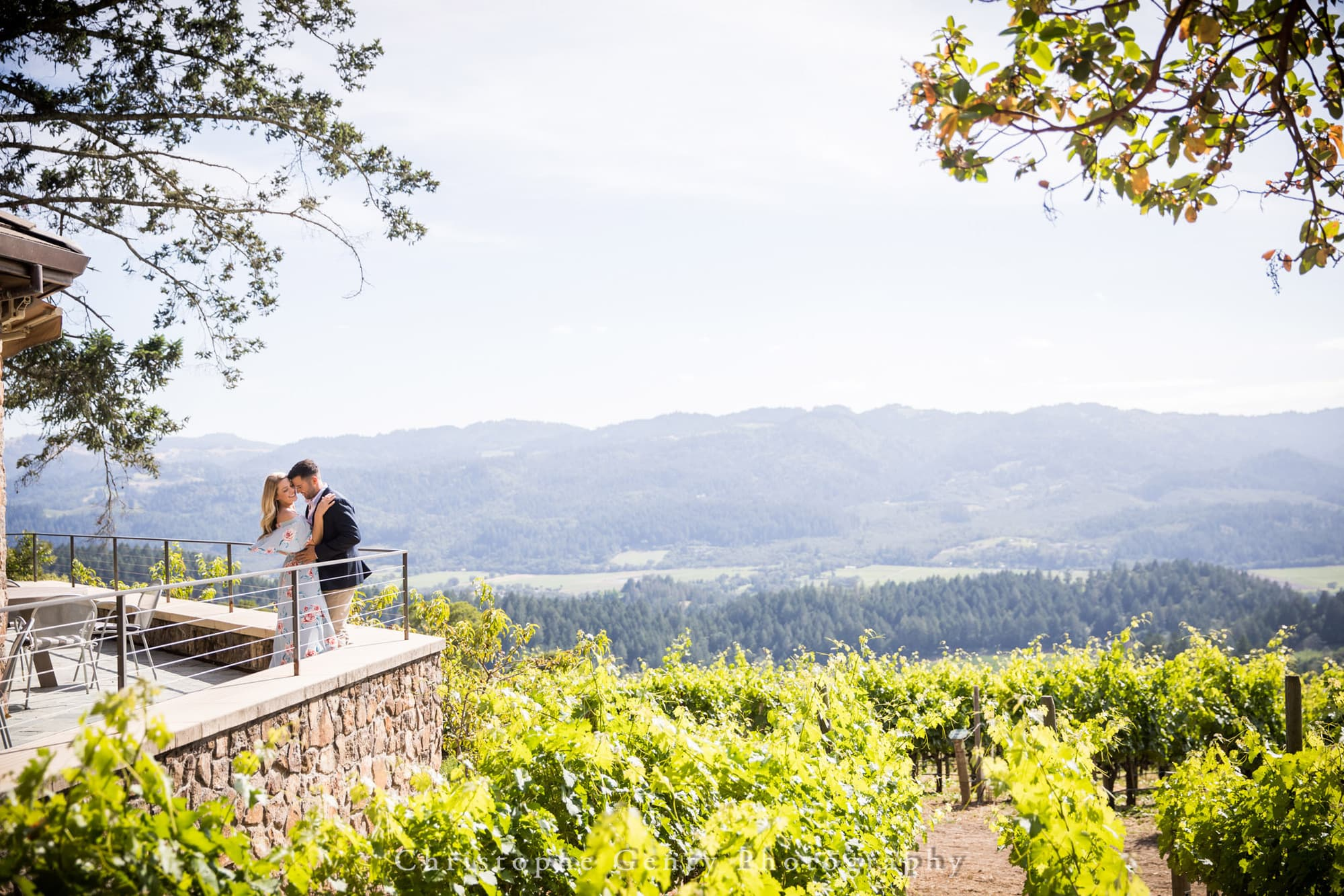 Marriage Proposal Photography in Napa -1042