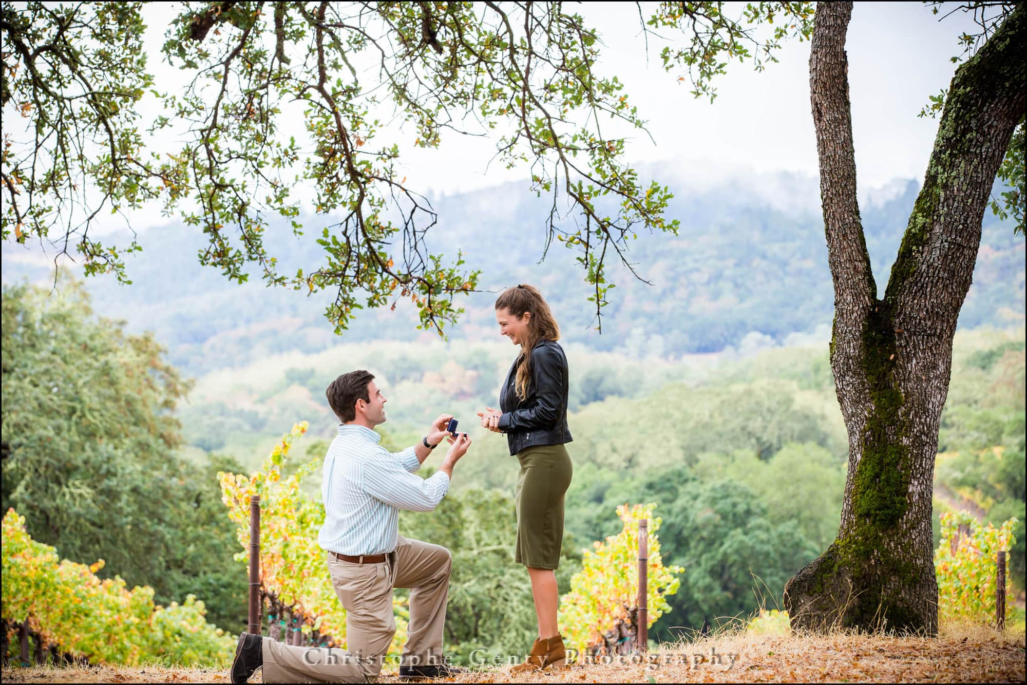Marriage Proposal Photography In The Napa Valley Buehler Vineyards St Helena Ca
